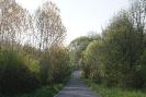 As Pontes - Piño
